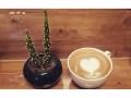 کافه فرانت