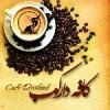 کافه دارکوب-لاهیجان