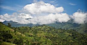 روستای لوکونزو (Lukonzo) در قلب کوهستان روونزوری در اوگاندا پوشیده از مزارع قهوه. عکس: سون ترفین