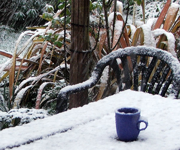 http://icoff.ee/fa/wp-content/uploads/2012/01/snow-blue-cup.jpeg