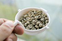 Flickr asgw Unroasted coffee bean