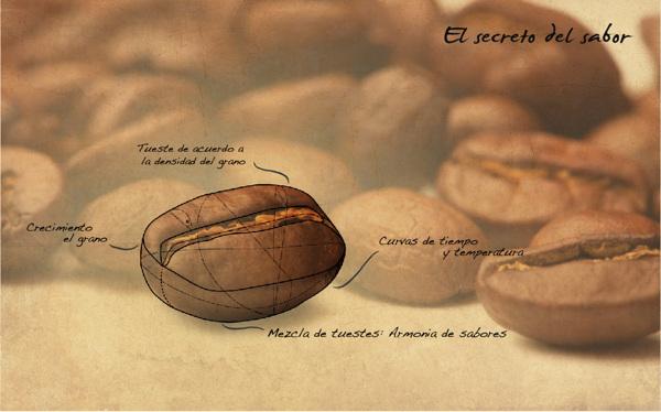 رمز و راز طعم قهوه