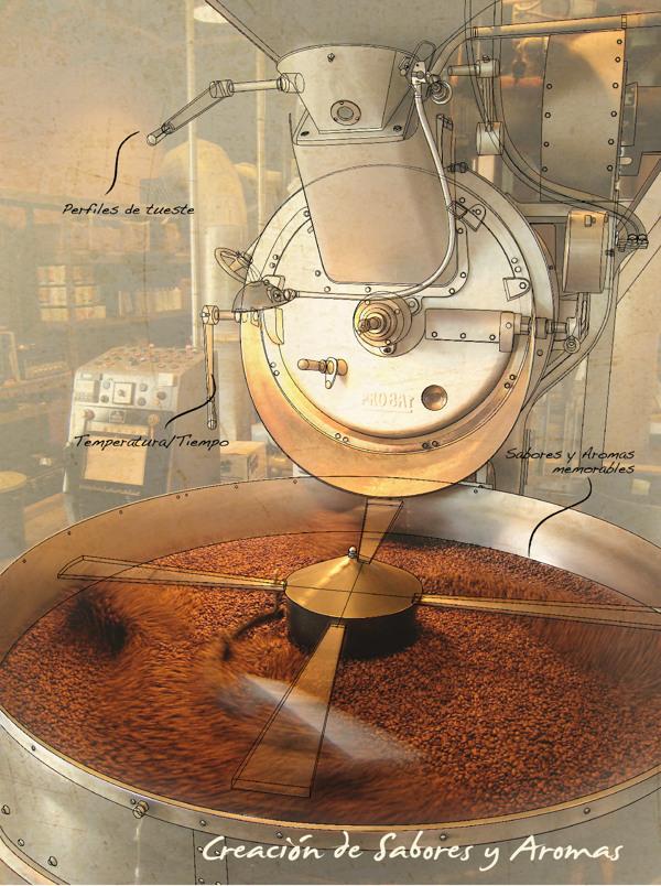شکلگیری عطر و رایحهی قهوه در زمان روست