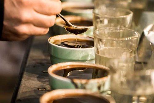 آموزش قهوه و باریستا آیکافی