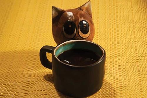 قهوه قجر