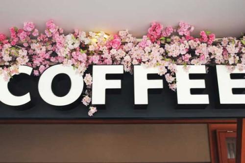 قهوه ژاپن آیکافی