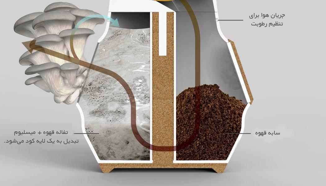 قهوه سازی که قارچ خوراکی تولید میکند.