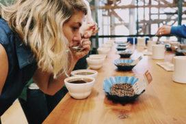 اسیدهای قهوه آیکافی
