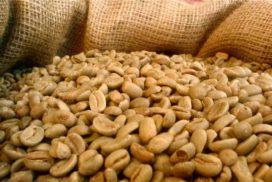 فرآوری قهوه به روش خیس