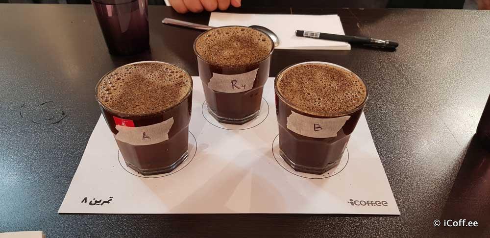 کارگاه درک حسی قهوه آیکافی تبریز