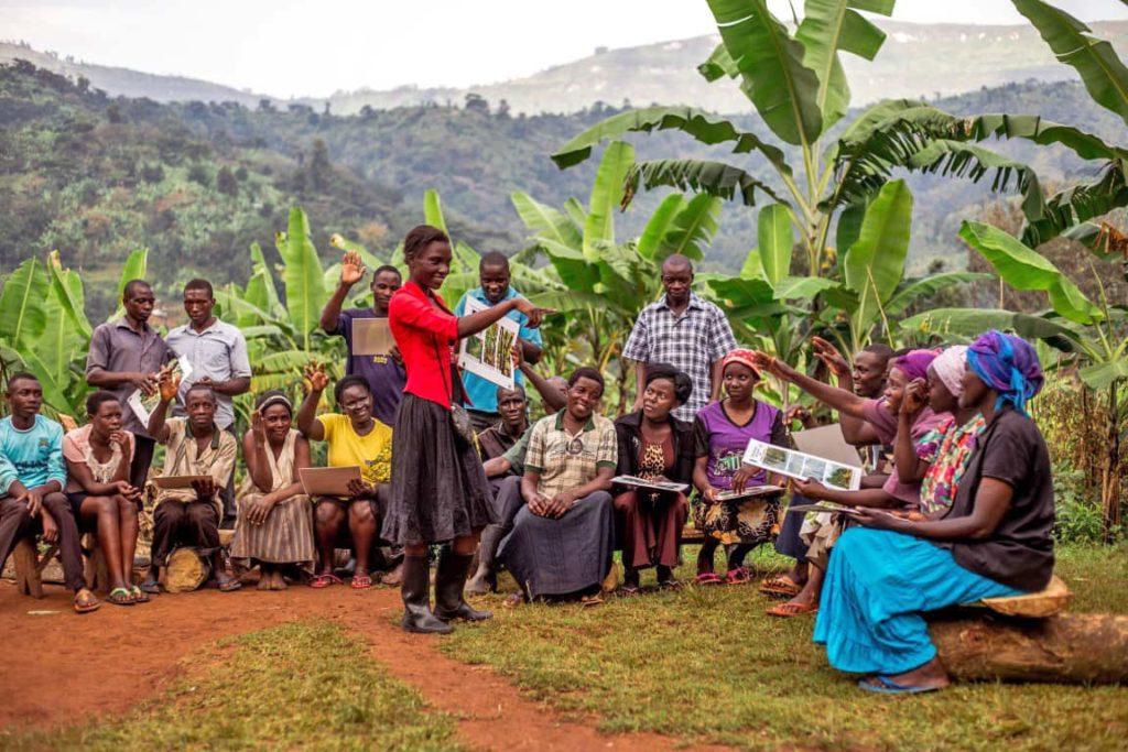 اوگاندا و نبرد تغییرات اقلیمی