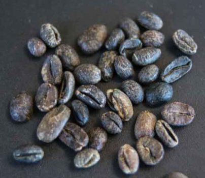 عیوب قهوه سبز؛ دانه تمامسیاه