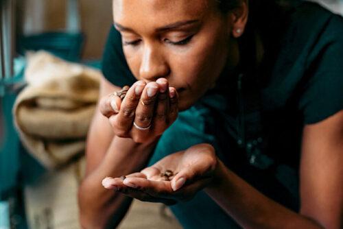 بازیابی بویایی بعد از کرونا